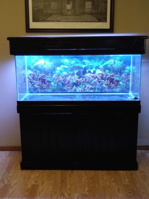 75 Gallon Fish Tank for Sale in Stanwood, WA