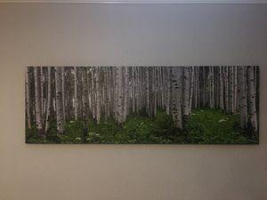 ASPEN FOREST CANVAS PICTURE for Sale in Phoenix, AZ