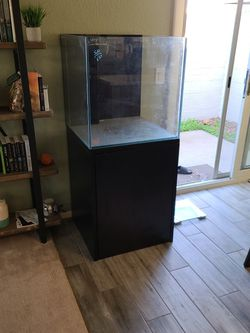 60 Gallon Cube Saltwater Fish Tank (Low Iron Glass) for Sale in Tempe,  AZ