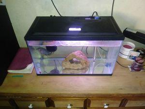 10 gallon fish tank for Sale in Montebello, CA