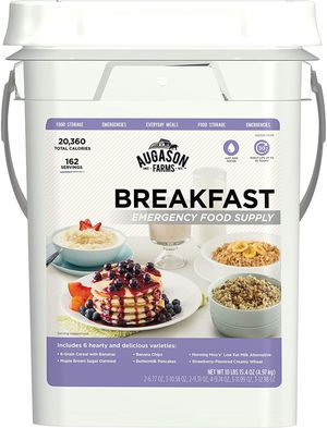 Augason Farms Breakfast Emergency Food Supply 11 lbs 1.8 oz 4 Gallon Pail for Sale in Mill Creek, WA