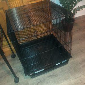 Bird Cage for Sale in Willingboro, NJ