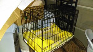 Animal cage for Sale in El Cajon, CA