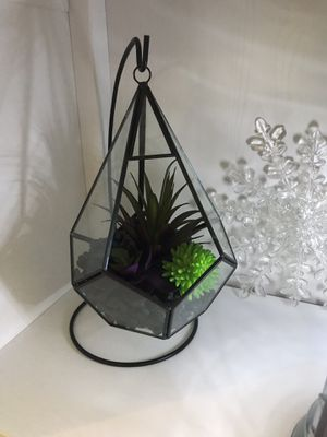 Geometric terrarium for Sale in Alexandria, VA