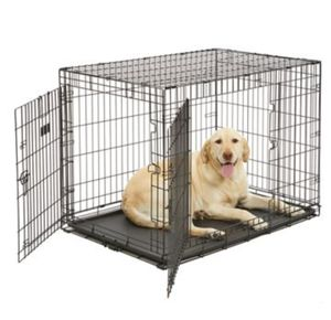 Dog Crate for Sale in Lacey, WA