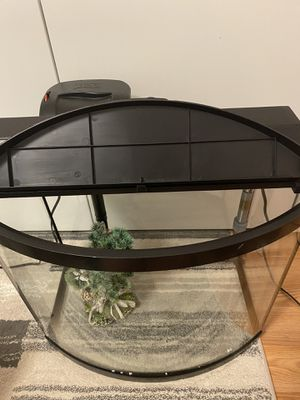 16 gallon fish tank with filter, heater, and decoration for Sale in Harrisonburg, VA