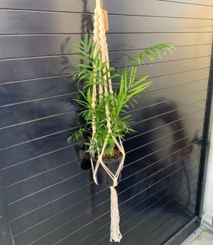 2 Macrame plant hanger, garden, pothos, boho decor for Sale in Houston, TX