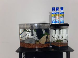 Fish tanks for Sale in Orlando, FL