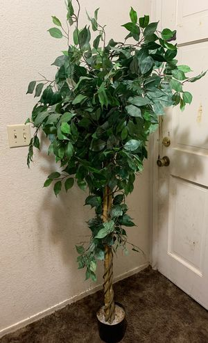 Fake home decor tree for Sale in Lodi, CA