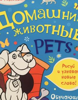 Coloring Book Домашние животные Рисуй и узнавай новые слова. Обучающие раскраски for Sale in Austin,  TX