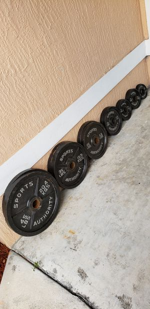 Olympic Weight Set | 255 Pounds of Plates for Sale in Cutler Bay, FL