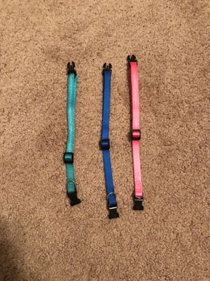 Puppy Collars for Sale in Saucier, MS