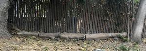 Free Fire Wood for Sale in Fullerton, CA
