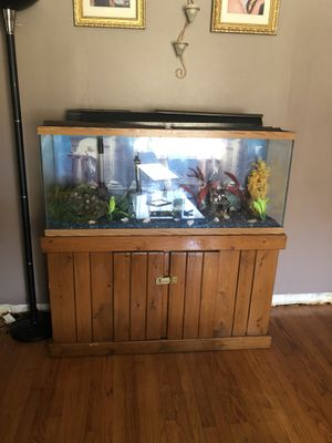 Fish tank 57 gallons with decorations included for Sale in St. Louis, MO