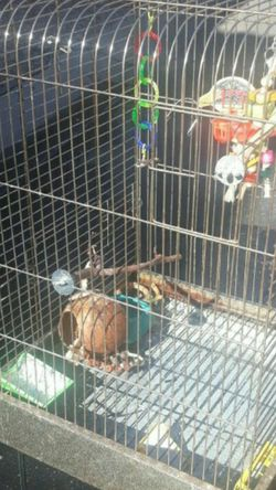 Bird Cage With Stand for Sale in Phoenix,  AZ