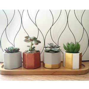Silicone mold for concrete planter Succulent plants for Sale in San Diego, CA