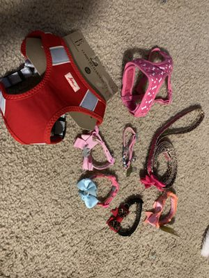 ASSORTED HARNESS , DOG COLLARS ECT for Sale in Boston, MA