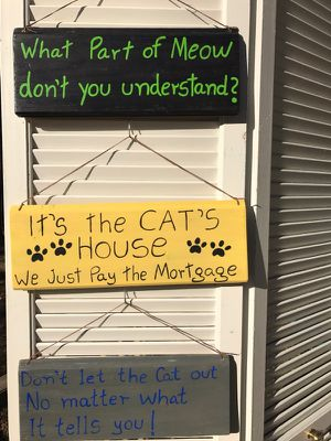 Funny cat signs/hand made for Sale in Durham, NC