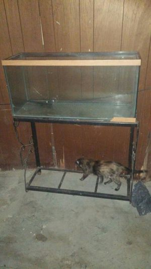 Fish tank and stand 60 for Sale in Detroit, MI