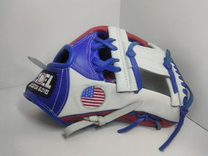 Custom baseball gloves for Sale in Los Angeles, CA