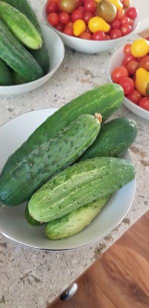 Organic fresh tomato cucumber for Sale in Aurora, CO