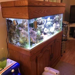 75 Gallon reef ready aquarium for Sale in Largo, FL
