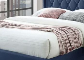 Assembled Queen Velvet Luxurious Bed for Sale in Bettendorf,  IA
