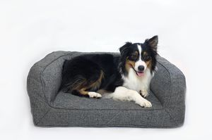 Brand New Size LL Dog/Cat Bed for Sale in Santa Ana, CA