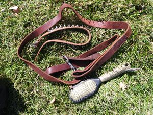 Dog leach, collar, brush for Sale in Tracy, CA
