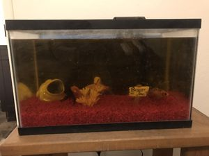 """15 Gallon Fish """"Aquarium"""" with water filter plus stand for Sale in Fresno, CA"""