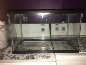 10 gallon tank for Sale in Kissimmee, FL