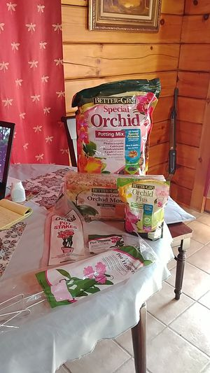 Orchids care for Sale in Columbiaville, MI