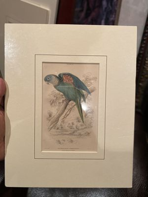 Bird paintings for Sale in Houston, TX
