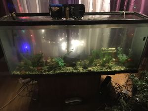'55 gallon fish tank with fish and all the trimmings & decorations $150 for Sale in Chicago, IL