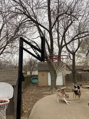 Basketball goal for Sale in Wichita, KS