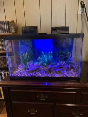 Aquarium 10gal Complete set up for Sale in Homestead, PA