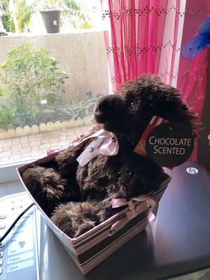 Chocolate teddy bear for Sale in Pembroke Pines, FL