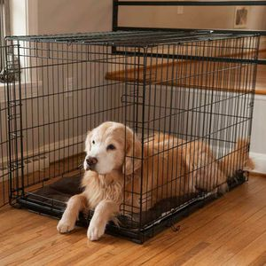 Extra Large Dog Crate 42.5 x 28.5 x 30.5 for Sale in Hillsborough, NC