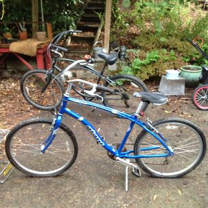 Blue cruiser and Honda mower for Sale in Bothell, WA