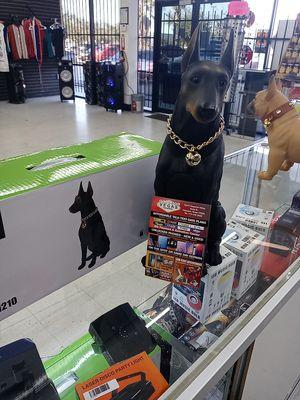 Bluetooth speaker Dog for Sale in Houston, TX