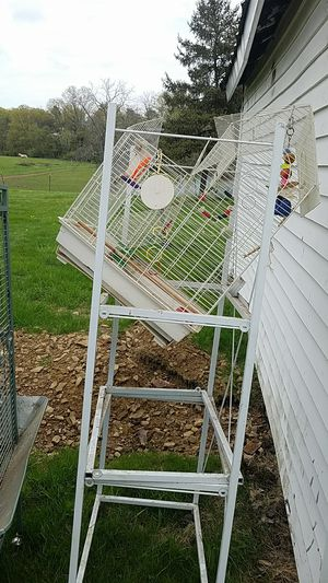 old bird cage. sturdy but dirty for Sale in Danville, PA