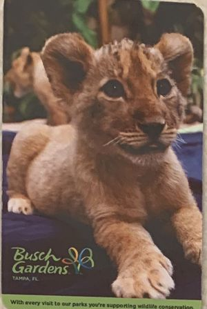 Busch gardens tickets with parking for Sale in Port St. Lucie, FL