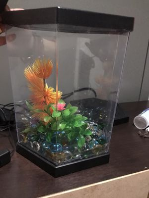 🐠 fish tank 🐠 for Sale in Revere, MA