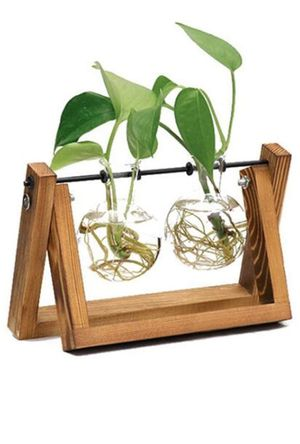Decor - Tabletop glass planter bulb vase (2 bulbs) for Sale in Kent, WA