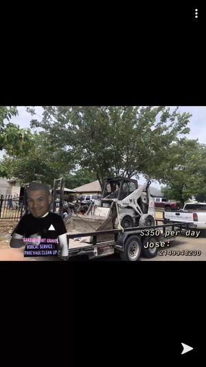Bobcat for Sale in Dallas, TX