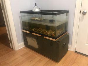 40 gallon Fish turtle reptile tank w/ fluval filter, auto feeder, light, dock, rocks etc for Sale in Chicago, IL