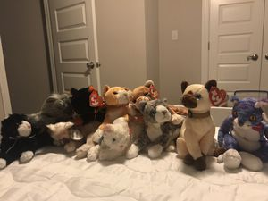 Cats Collection Ty Beanie Babies for Sale in Norfolk, VA
