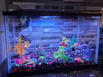 Fish Tank 5 Gallon for Sale in Florida City,  FL