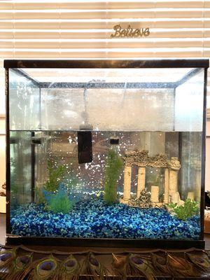 15 Gallon Aquarium only $35! for Sale in Austin, TX