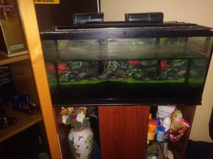 Fish tank, Filters and Stand for Sale in Miami, FL